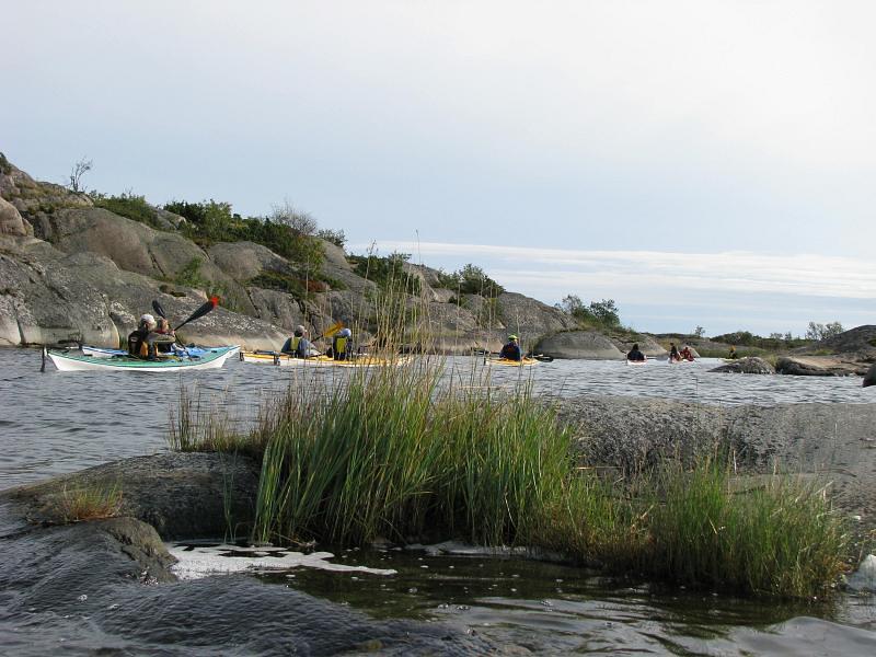 Vattungarna besöks av Norrviken paddlare