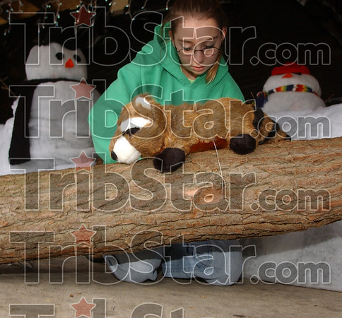 Not stirring: Rebecca Roberts fastens a plush raccoon to its log in the West Vigo High School display at Deming Park.
