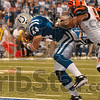 Hang on to it, Dallas: Indianapolis tight end Dallas Clark clings to a Peyton Manning pass as he steps into the endzone to score against the Cincinnati defense Sunday in Indianapolis.