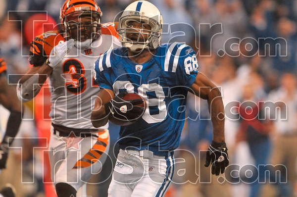 Big yards: Indianapolis wide receiver Marvin Harrison glances up towards the big screen as he tries to outrun the Cincinnati defense during the Colts' 35-3 win over the Bengals Sunday in Indianapolis.