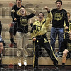 What a match!: The South Vermillion bench, including Kalli Uselman and senior Russell Peelman, celebrate with wrestler (at 285) after he defeated Plainfield's (285) Saturday during the Northview Wrestling Invitational in Brazil.