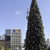 12-02-08 Union Square Xmas Tree