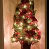 12-12-08 Hallway Tree
