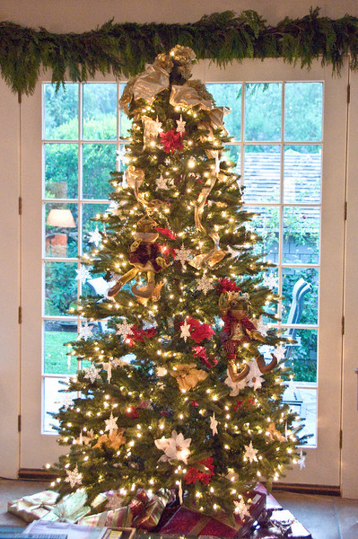 """12-03-08 Xmas Tree  Just lights, plastic snow flakes and poinsettia flowers this year in case Bonnie and Clyde decide that climbing the tree would be lots of fun. So far they don't seem interested in it but I'm not taking any chances.  Plus, the tree went up in about 20 minutes instead of 2 days. Way better this year since we travelled at Thanksgiving and had only a week to get ready for <a href=""""http://jmearns.smugmug.com/gallery/6766034_JExUZ#432106371_Y8ZGa"""">THE PARTY</a>."""