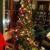 MAMA's House Tree