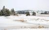 Frozen salt marsh on the opposite side of the highway running along Lawrencetown Beach.
