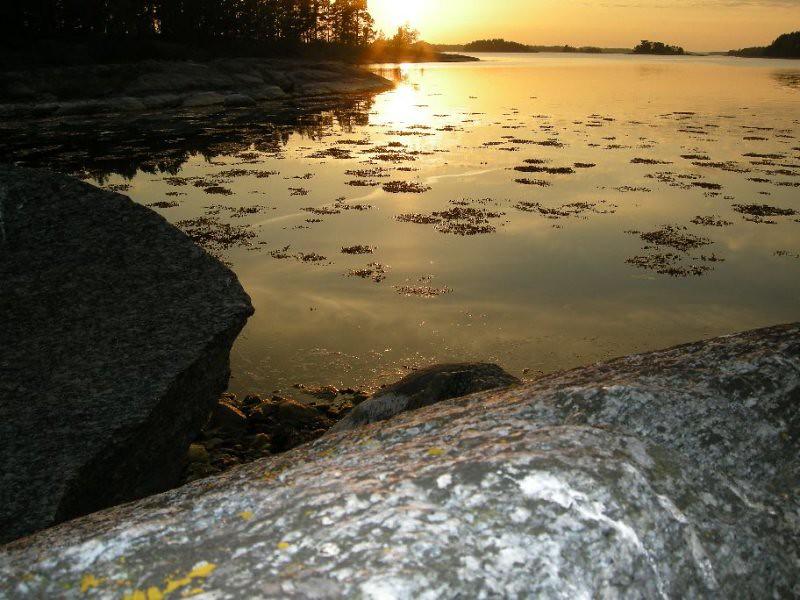 Norrviken Nationalhelgs paddling-08 030.jpg