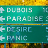 Paradise, Desire and then Panic?