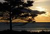 Sunrise at Fisherman's Reserve