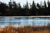 Shades of Blue Ice