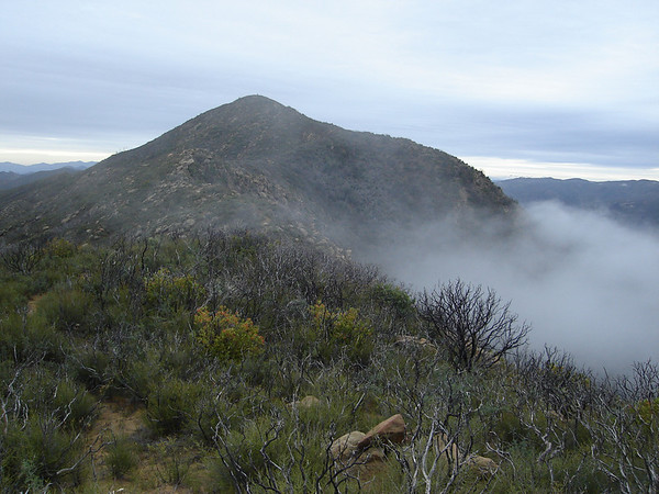 FISKE PEAK: NOVEMBER 11, 2008