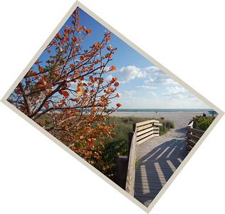 Lido Beach Park, Sarasota