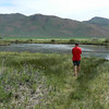 1st look at the Silver Creek, SUn Valley,  Idaho