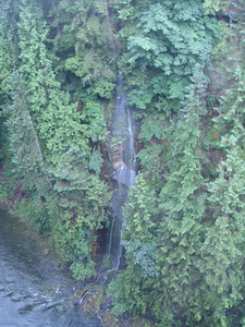 At Capilano Bridge