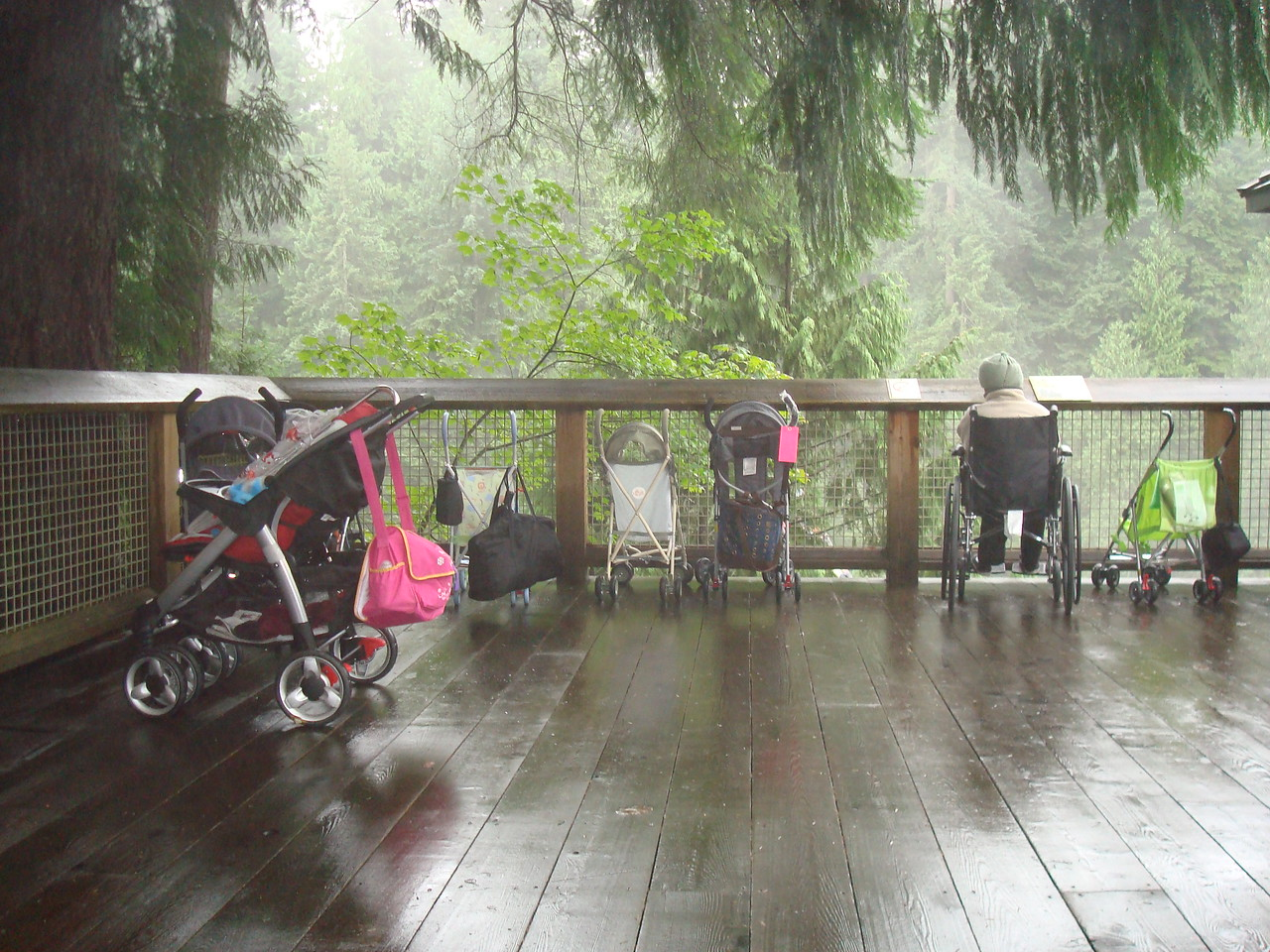 At Capilano Bridge. Strollers and wheelchairs aren't allowed on the bridge, so people leave them (and one poor grandma) at the start.