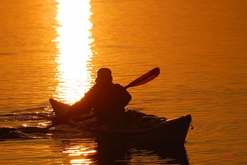 Afton paddling
