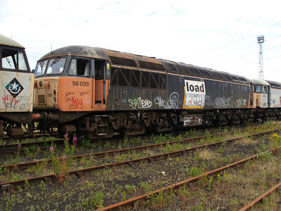56055 at Healy Mills 27/07/08.