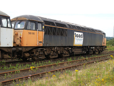 56116 at Healy Mills 27/07/08.