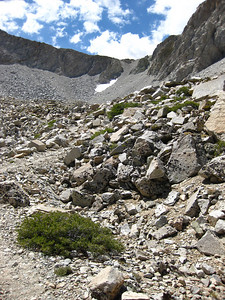 Shepperts pass - a scree field, high up