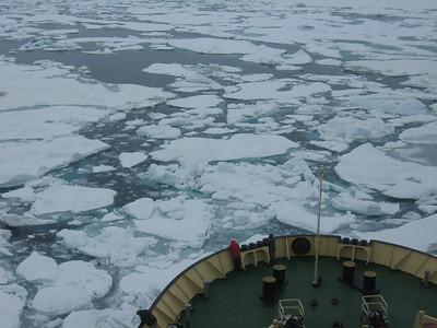 Ice Breaking in Norwegian Bay - Amy Garawitz
