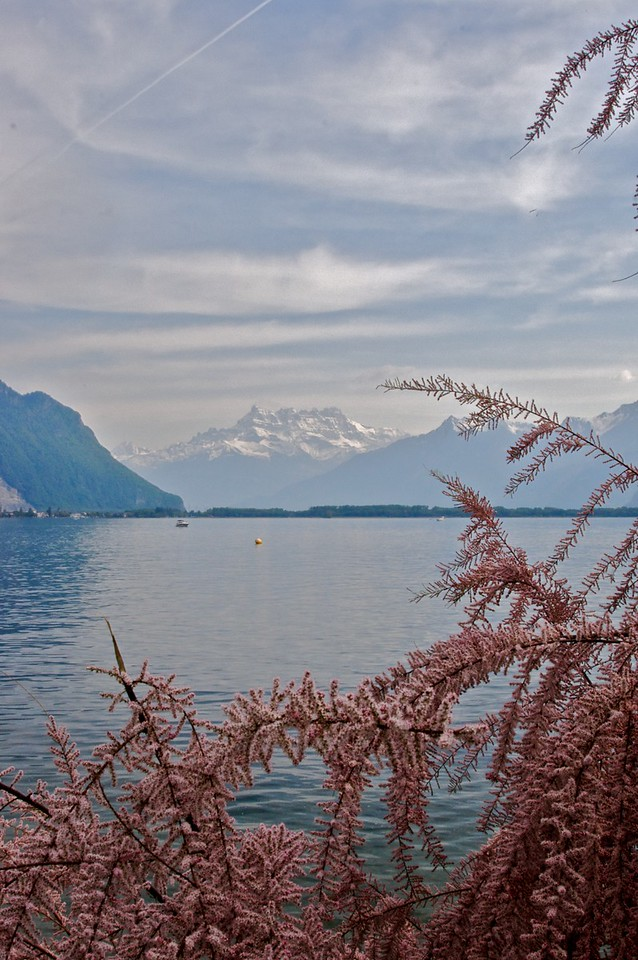 The Dents du Midi (in France) can be clearly seen across Lake Geneva (Lac Léman) from Montreux.