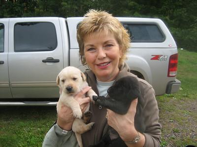 KATIE'S NEW PUPPIES  9/14/08