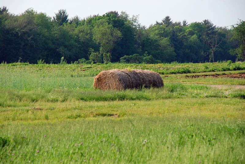 Haystack - taken in honor of my friend Erica... she knows why.