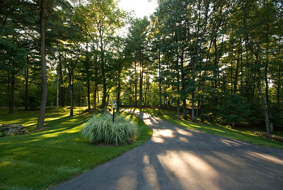 The driveway in the late afternoon sun.  August and the grass is still very green - amazing what daily rain can do.