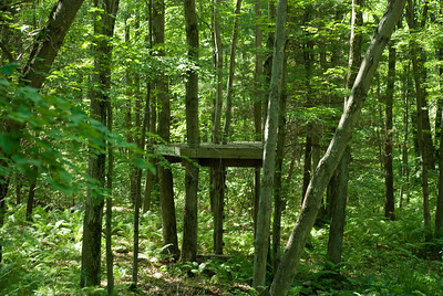 It's a fort in the woods.  Who built it and how long ago?  I've never seen any kids there.