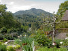 03-25-08 Ellens Yard<br /> <br /> We had a nice girls lunch here yesterday in Ellen's garden. That's Mt Tam in the distance and the deck off Ellen's studio to the right.