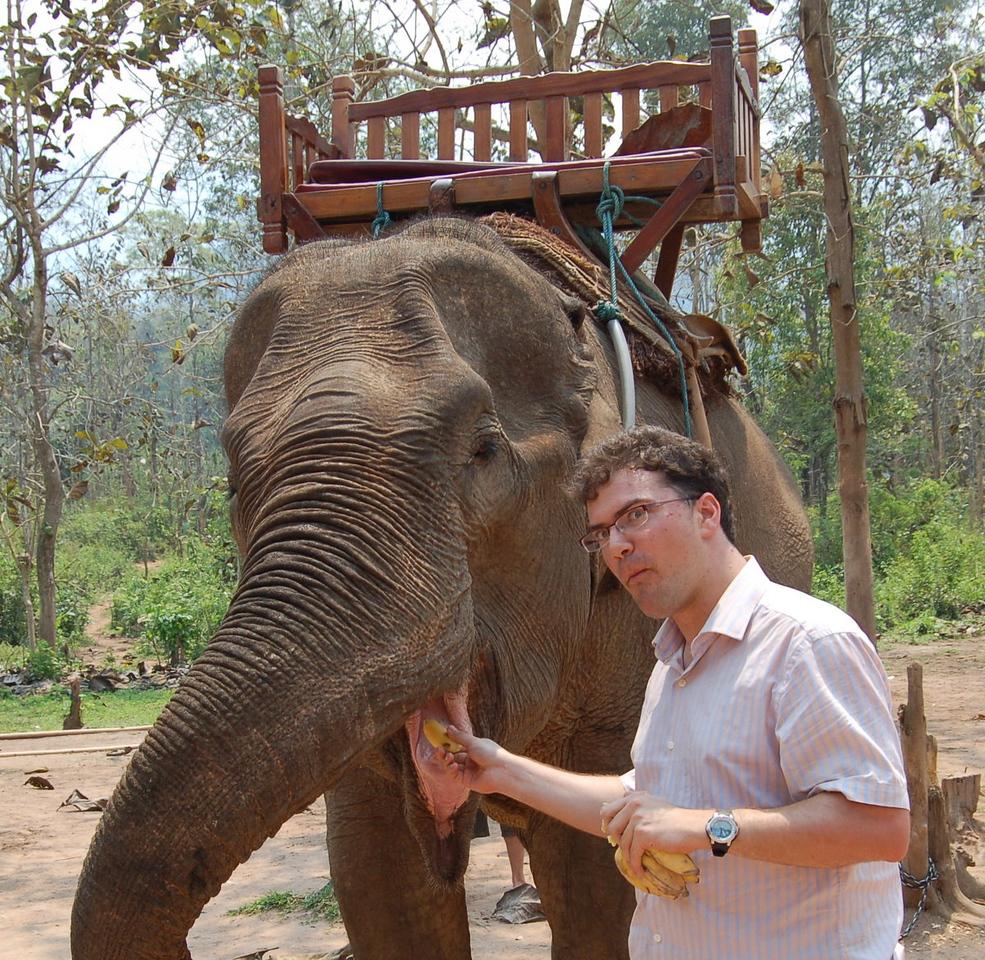 25 feeding bananas to my elephant