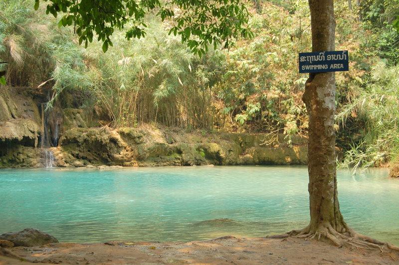 27 nice blue swimming water