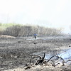 20080424_milford_connecticut_marsh_fire_silver_sands-033