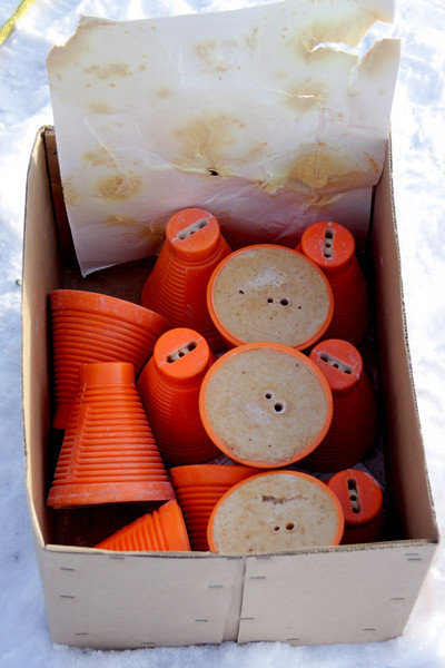 A small cardboard box full of a whole bunch of explosives.