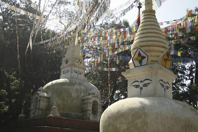 The Monkey Temple in Kathmandu. First time I've seen monkeys that were not in the zoo, and they were everywhere.