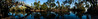 A 180 degree pano of a couple of the creeks and bayous of the Barataria Preserve.