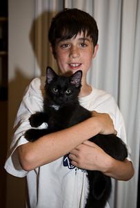 New Truffle Kitten, July 2008