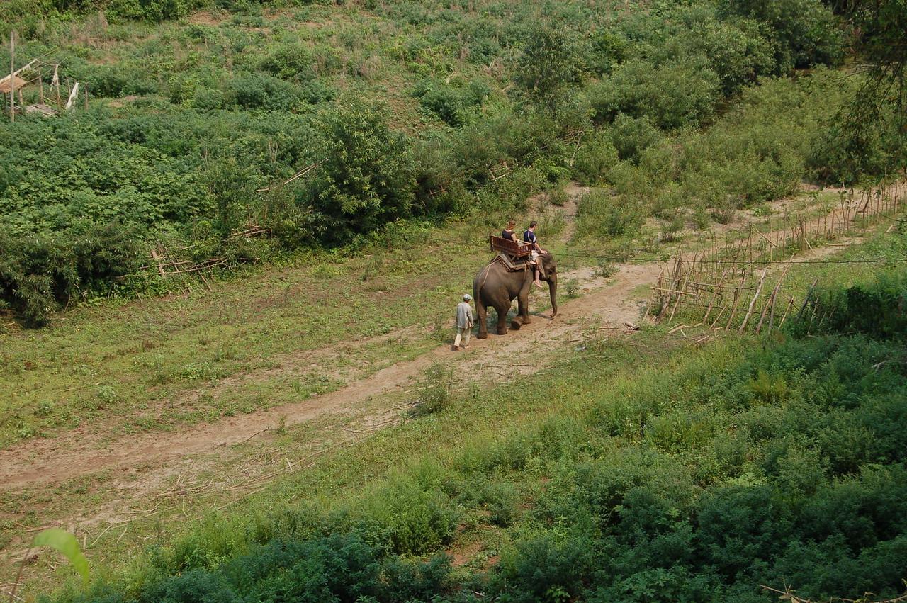 Long-distance Elephant