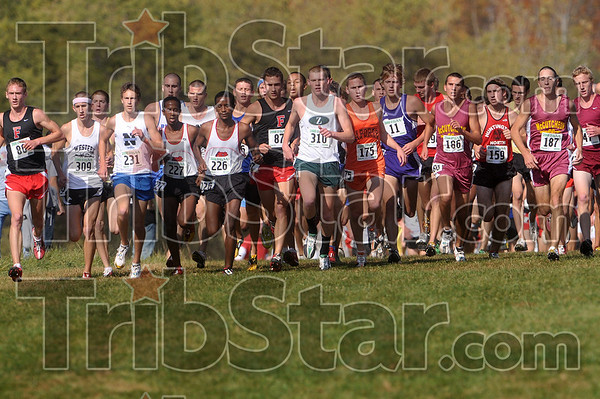 The final run: Competitors in the IHSAA boys cross country state final overcome one of the small hills on the Lavern Gibson Cross Country course Saturday.