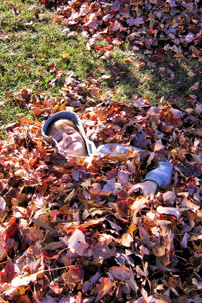 Anthony in the leaves