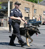 Ofc Cardinale of the K9 Unit marches down Broadway in the City of Newburgh during the annual Memorial Day Parade.
