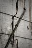 The walls of Alcatraz are slowly coming apart.