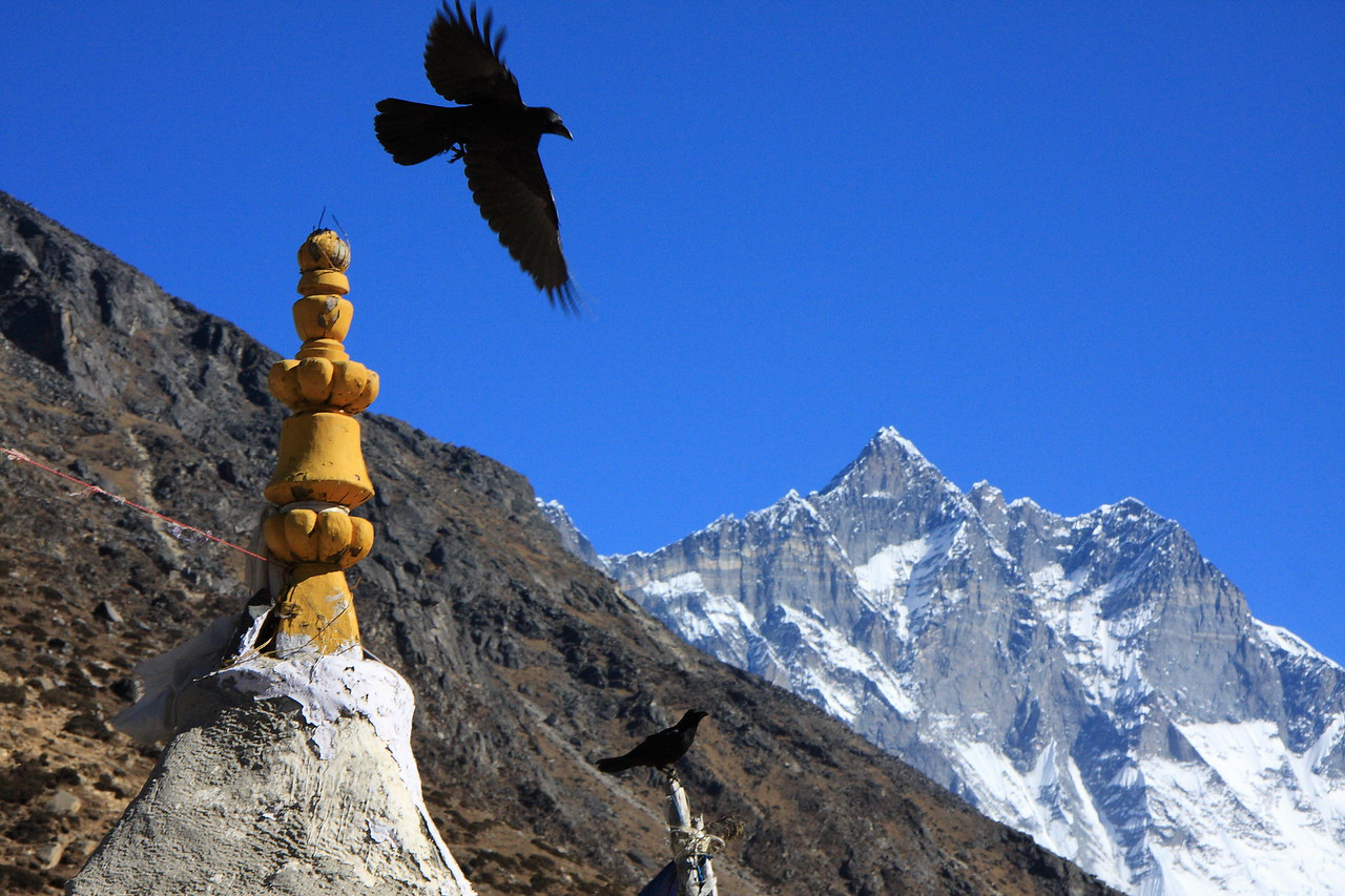A raven flies from a chorten wtih Lhotse in the background