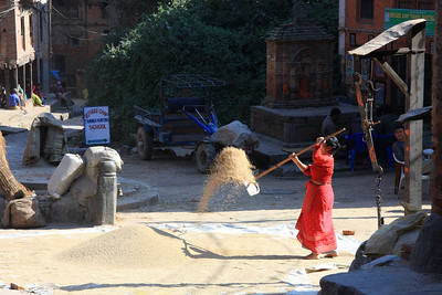 Drying rice in the sun Bhaktapur - UNESCO World Heritage Site (Kathmandu, Nepal)