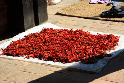 Bhaktapur - UNESCO World Heritage Site (Kathmandu, Nepal)  Drying chilis