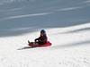 Joey sledding.