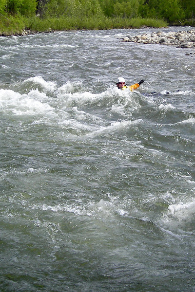 Jon King swims the rapids, aiming to eddy out behind a large boulder mid-stream.