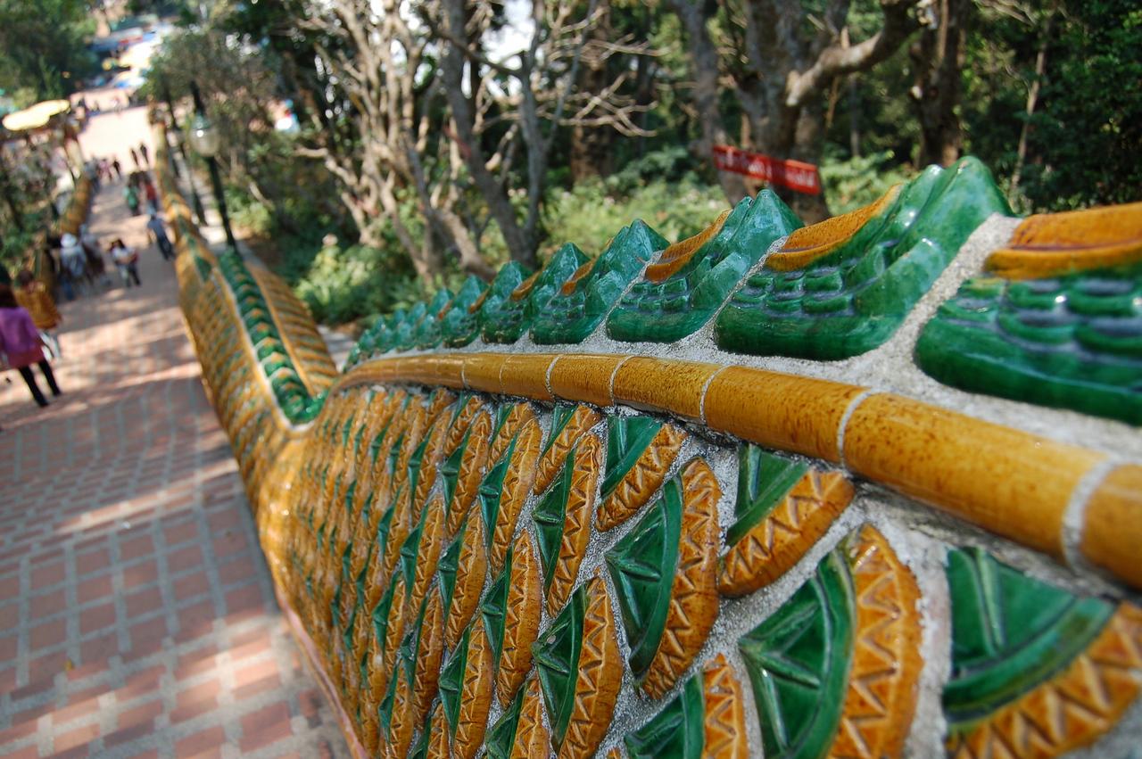 Naga dragon at the temple