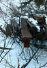 Rusting Rails