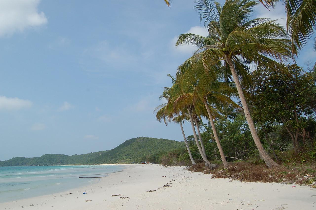 Perfect beach shot